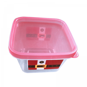 Plast Food Container